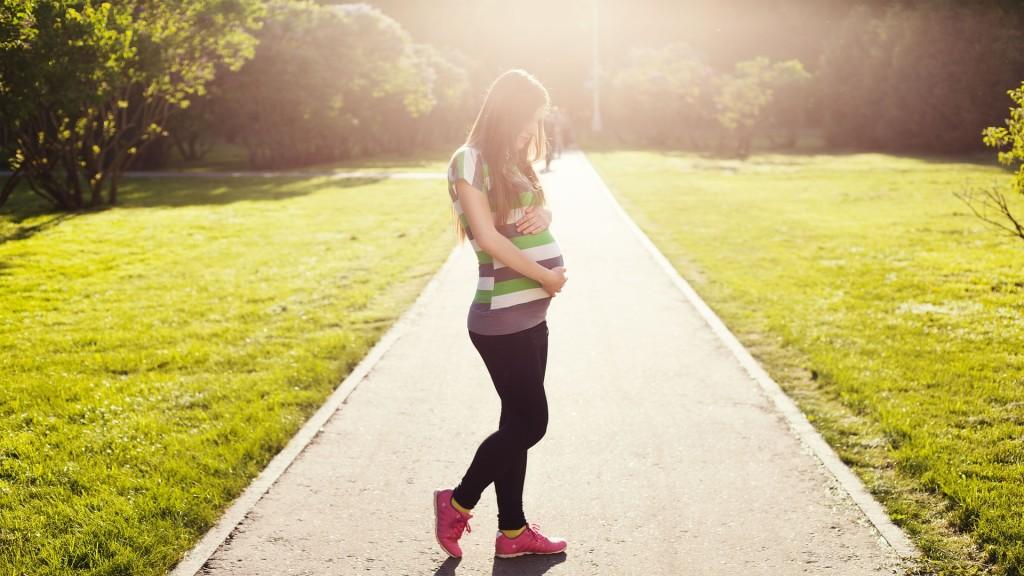 pregnant-1561750_1920